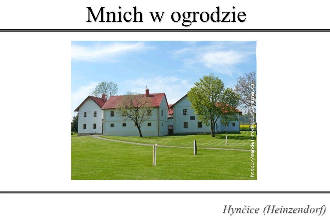 Mnich w ogrodzie Hynčice (Heinzendorf)