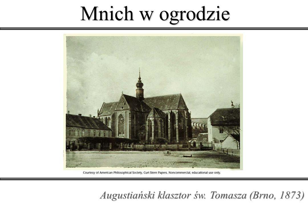 Mnich w ogrodzie Augustiański klasztor św. Tomasza (Brno, 1873)
