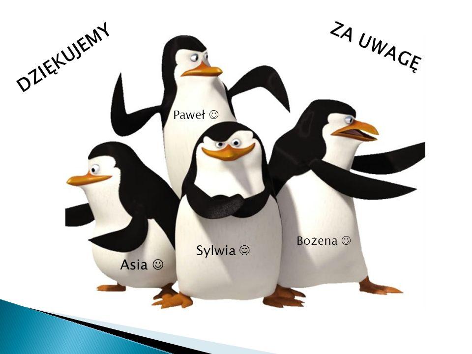 DZIĘKUJEMY ZA UWAGĘ Paweł  Bożena  Sylwia 