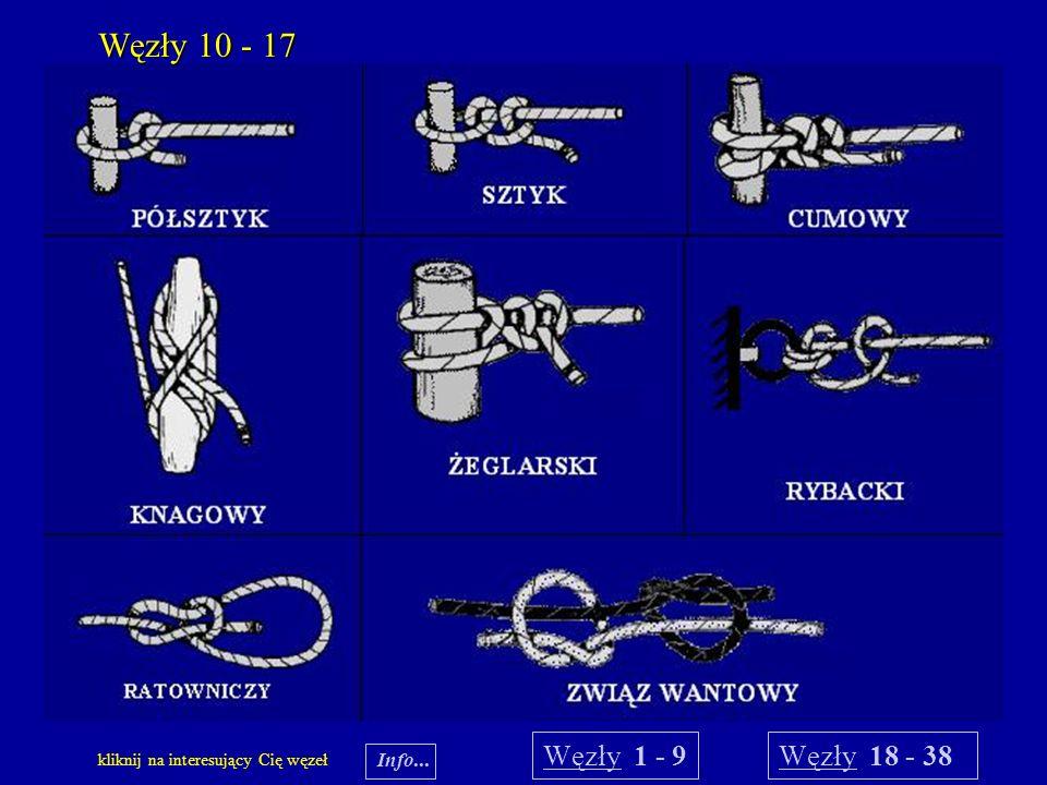 Węzły 10 - 17 Węzły 1 - 9 Węzły 18 - 38 Info...