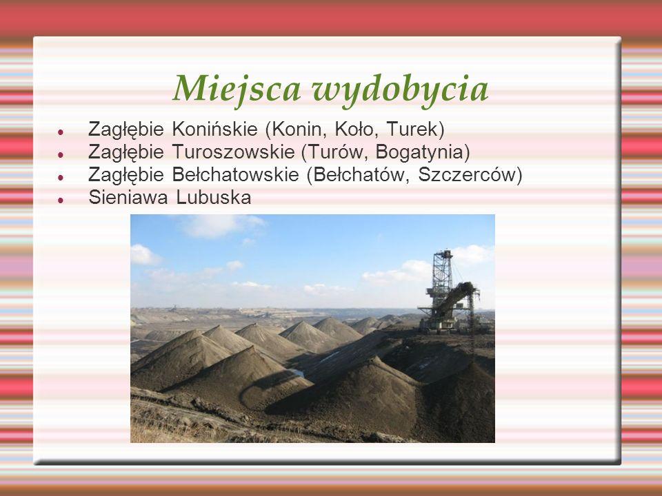 Miejsca wydobycia Zagłębie Konińskie (Konin, Koło, Turek)