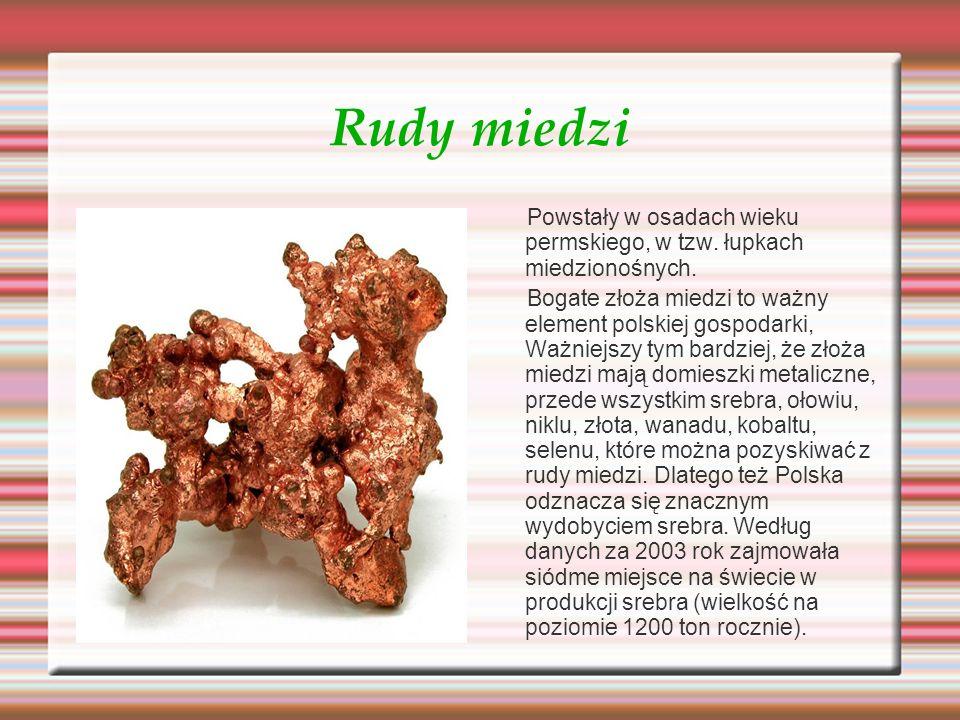 Rudy miedzi Powstały w osadach wieku permskiego, w tzw. łupkach miedzionośnych.