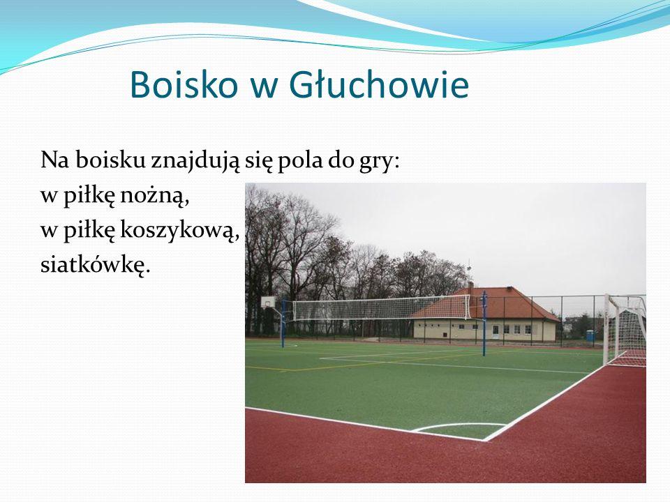 Boisko w Głuchowie Na boisku znajdują się pola do gry: w piłkę nożną, w piłkę koszykową, siatkówkę.