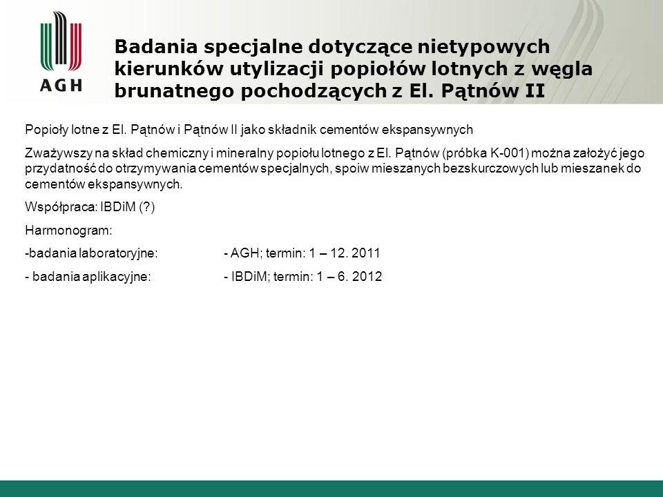Badania specjalne dotyczące nietypowych kierunków utylizacji popiołów lotnych z węgla brunatnego pochodzących z El. Pątnów II