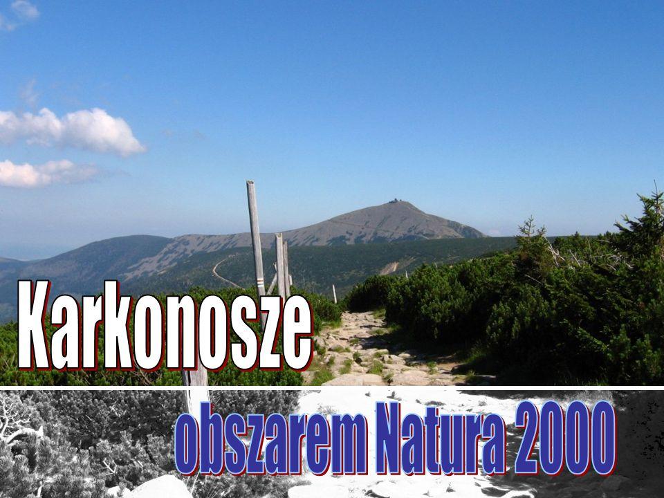 Karkonosze obszarem Natura 2000