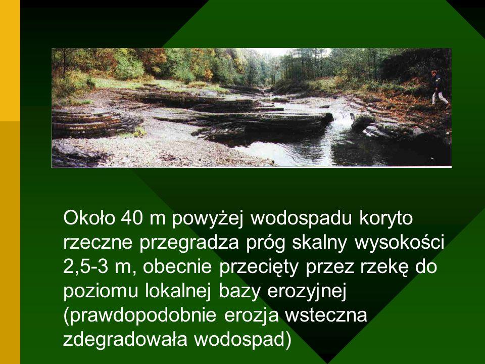 Około 40 m powyżej wodospadu koryto rzeczne przegradza próg skalny wysokości 2,5-3 m, obecnie przecięty przez rzekę do poziomu lokalnej bazy erozyjnej (prawdopodobnie erozja wsteczna zdegradowała wodospad)