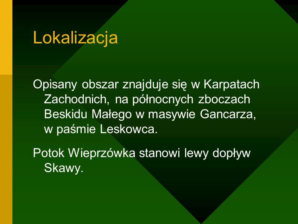 Lokalizacja Opisany obszar znajduje się w Karpatach Zachodnich, na północnych zboczach Beskidu Małego w masywie Gancarza, w paśmie Leskowca.
