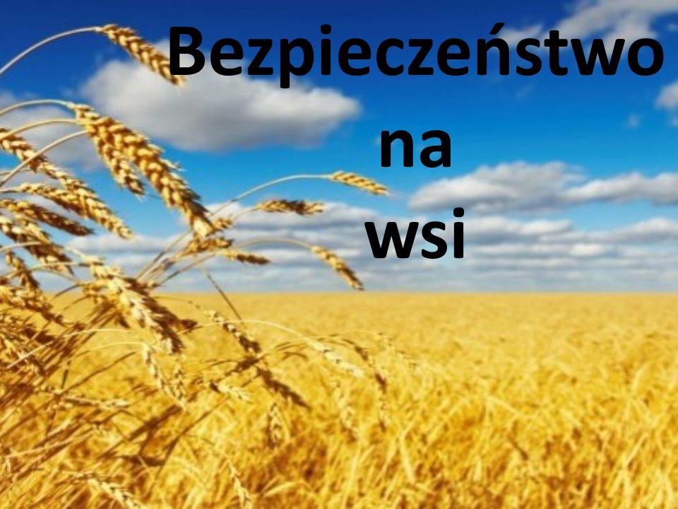 Bezpieczeństwo na wsi