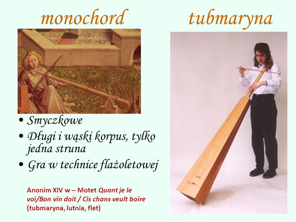 monochord tubmaryna Smyczkowe Długi i wąski korpus, tylko jedna struna
