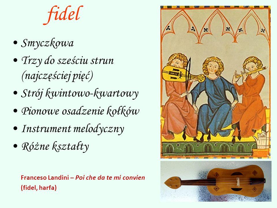 fidel Smyczkowa Trzy do sześciu strun (najczęściej pięć)