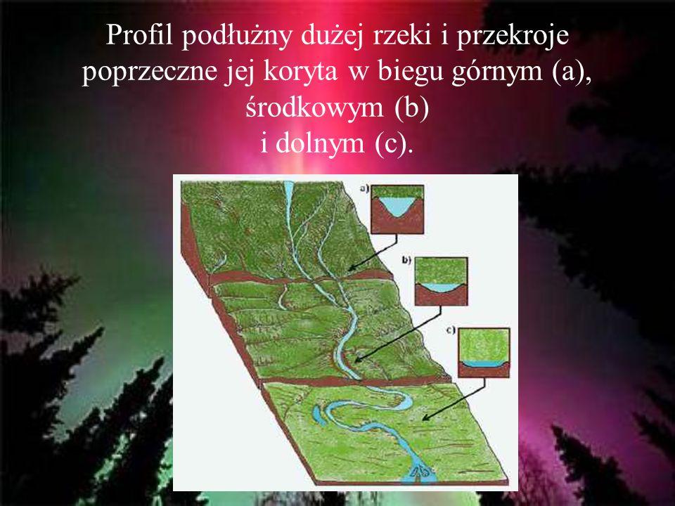 Profil podłużny dużej rzeki i przekroje poprzeczne jej koryta w biegu górnym (a), środkowym (b) i dolnym (c).