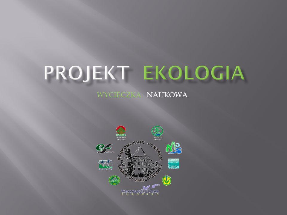 Projekt ekologia WYCIECZKA NAUKOWA