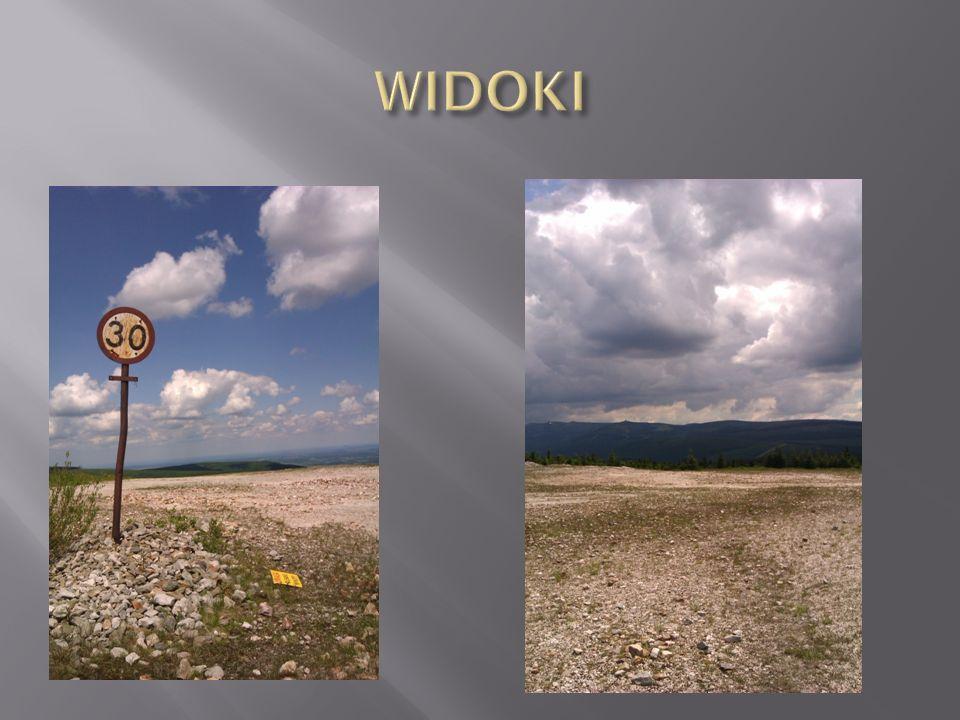 WIDOKI