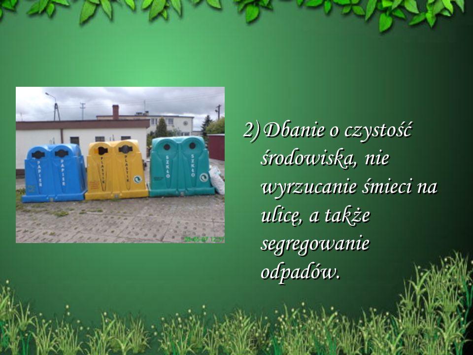 2) Dbanie o czystość środowiska, nie wyrzucanie śmieci na ulicę, a także segregowanie odpadów.