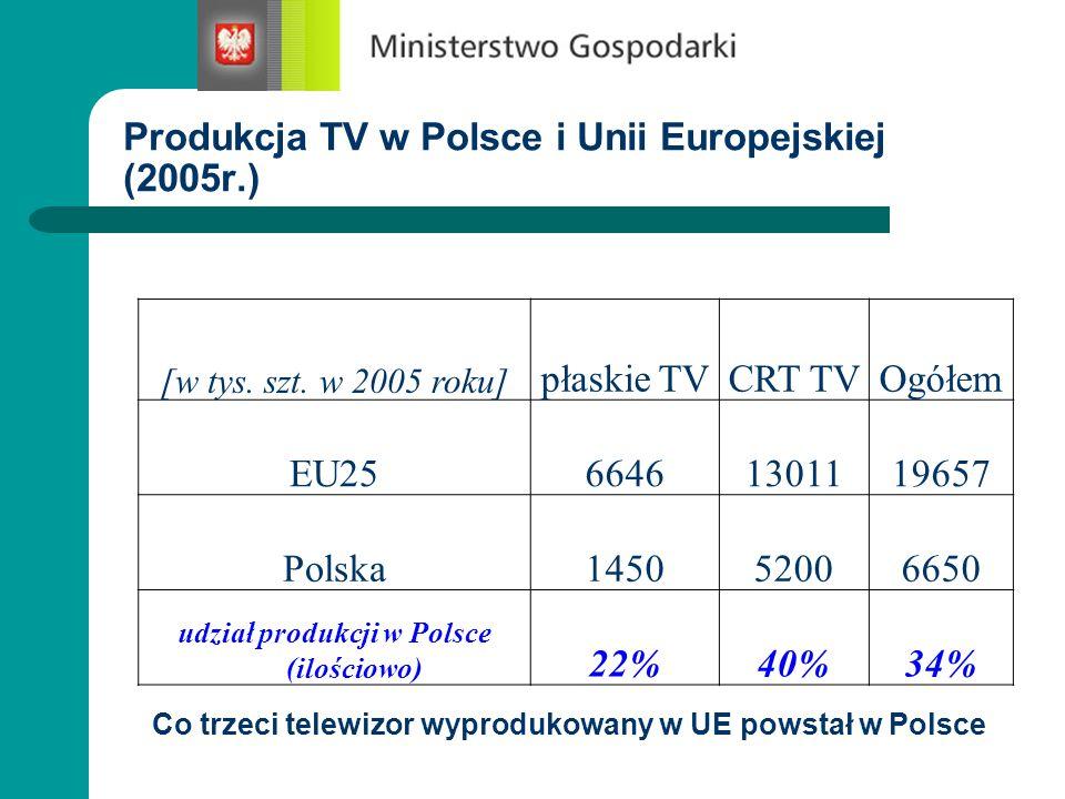 Produkcja TV w Polsce i Unii Europejskiej (2005r.)