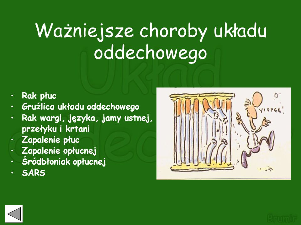 Ważniejsze choroby układu oddechowego
