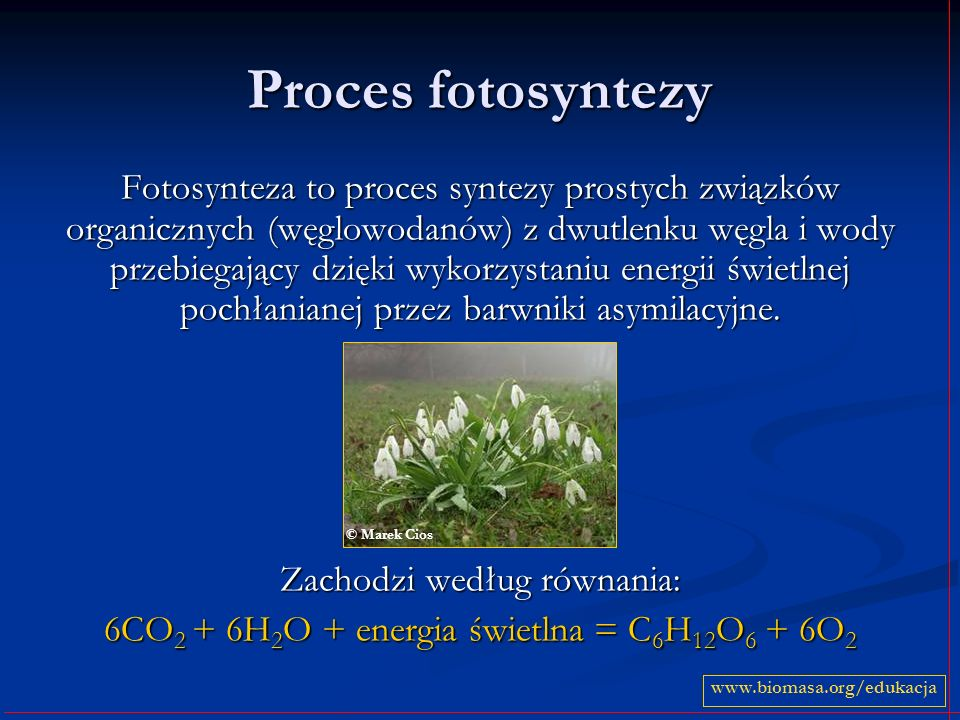 Proces fotosyntezy