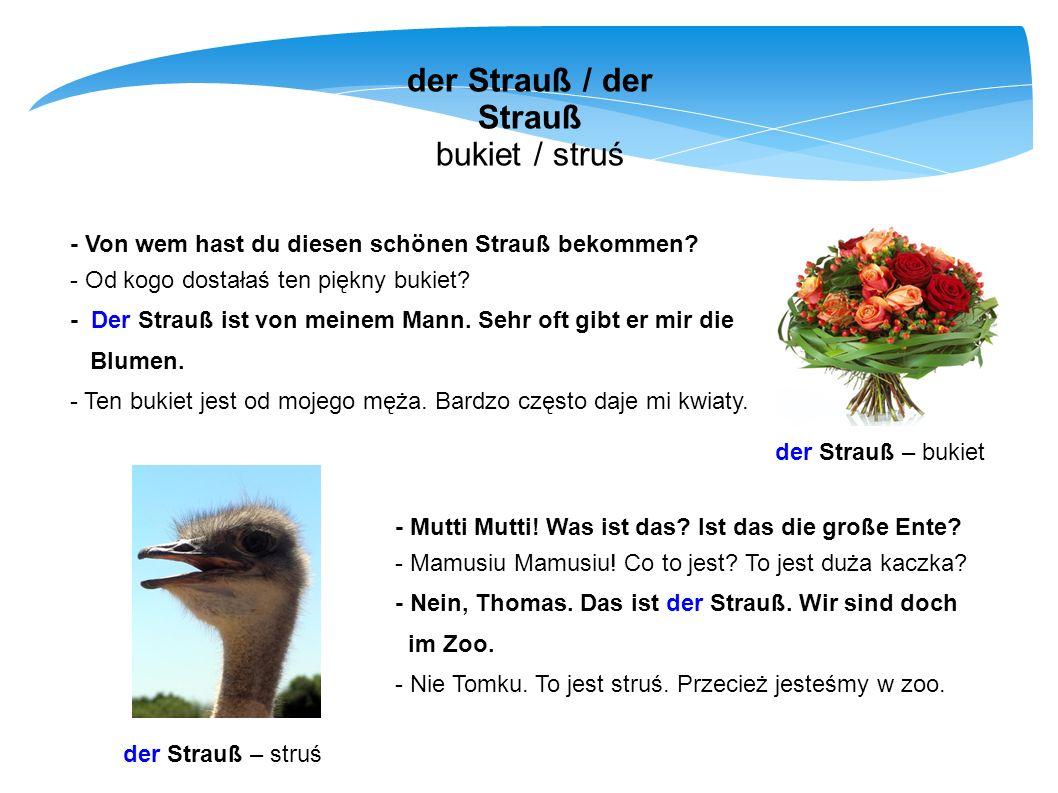 der Strauß / der Strauß bukiet / struś