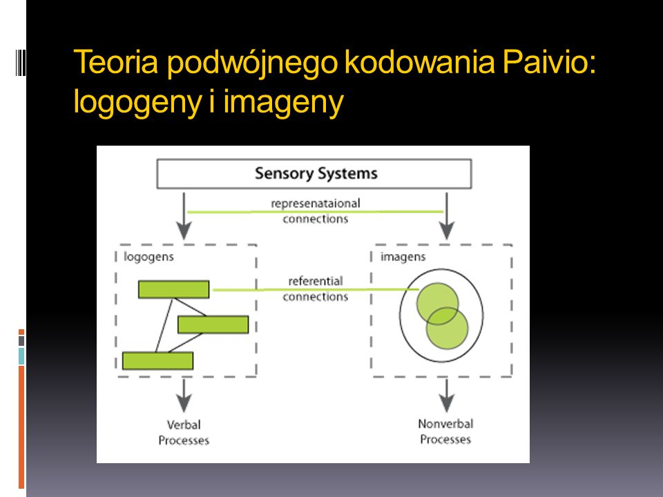 Teoria podwójnego kodowania Paivio: logogeny i imageny