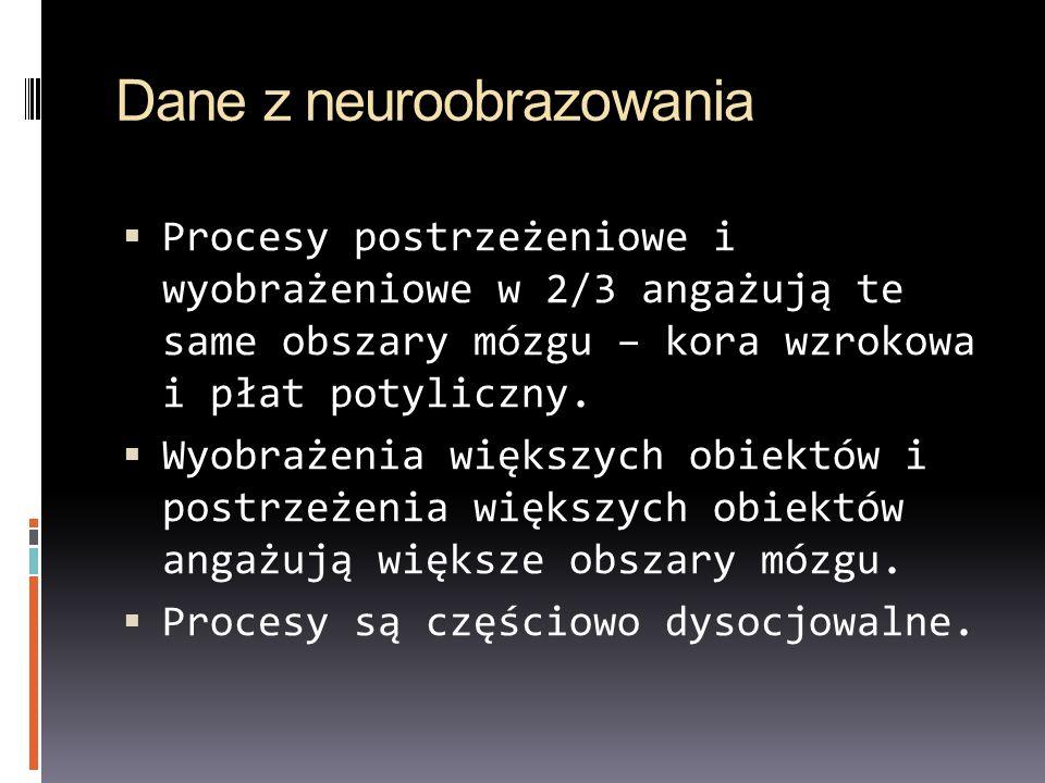 Dane z neuroobrazowania
