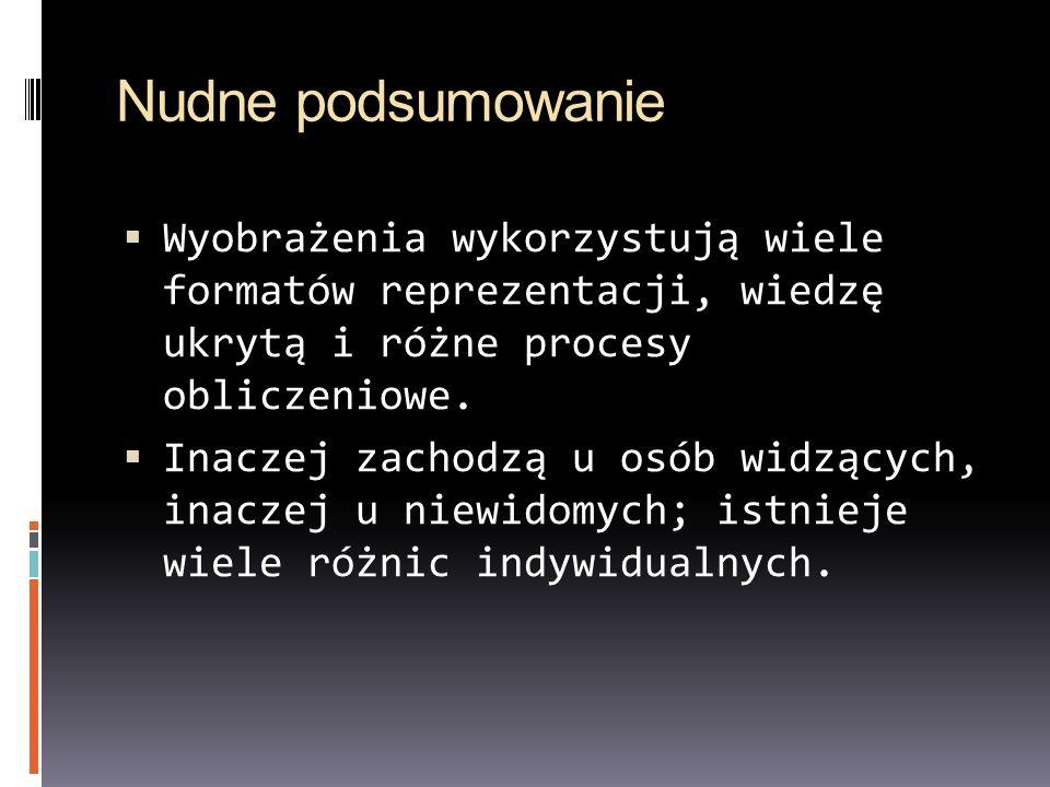 Nudne podsumowanieWyobrażenia wykorzystują wiele formatów reprezentacji, wiedzę ukrytą i różne procesy obliczeniowe.