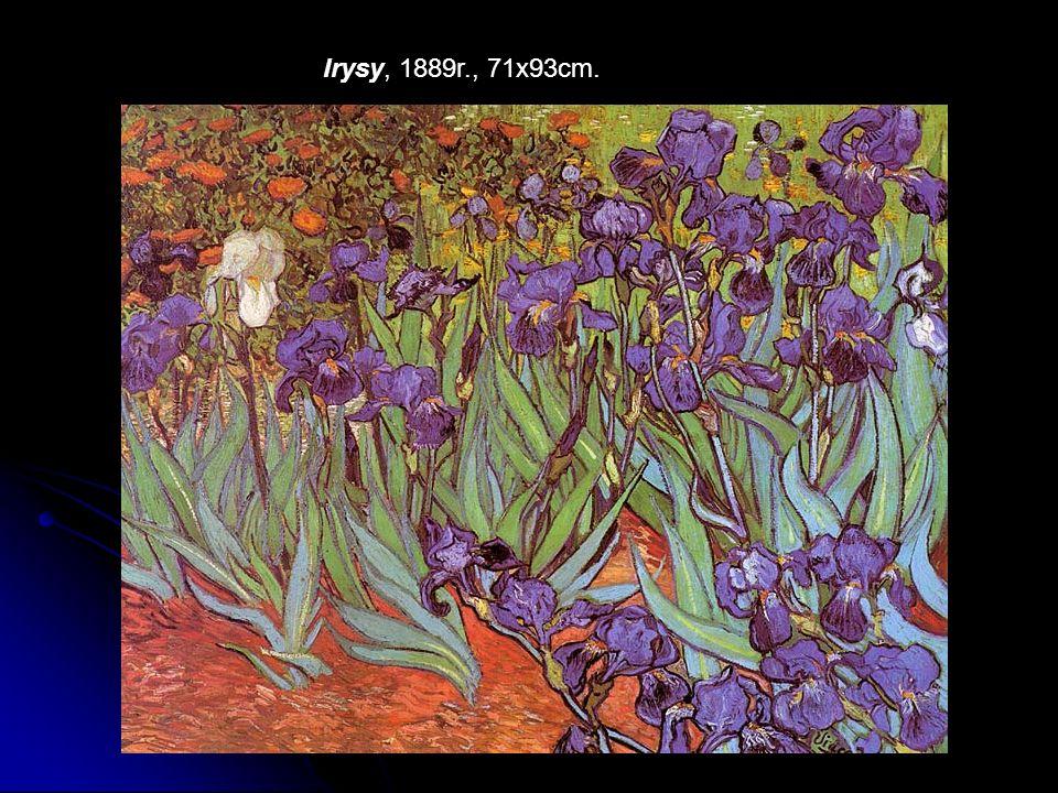 Irysy, 1889r., 71x93cm.