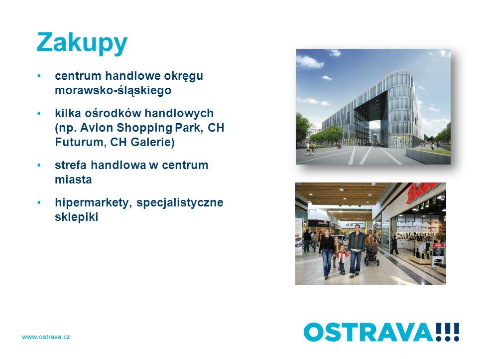 Zakupy centrum handlowe okręgu morawsko-śląskiego