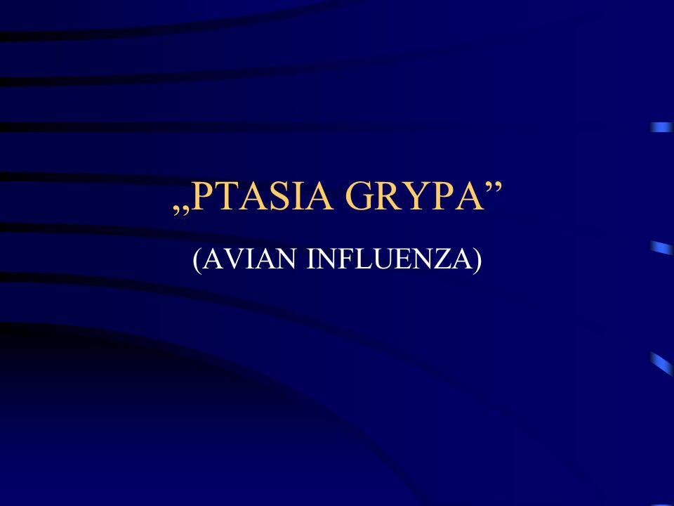 """""""PTASIA GRYPA (AVIAN INFLUENZA)"""