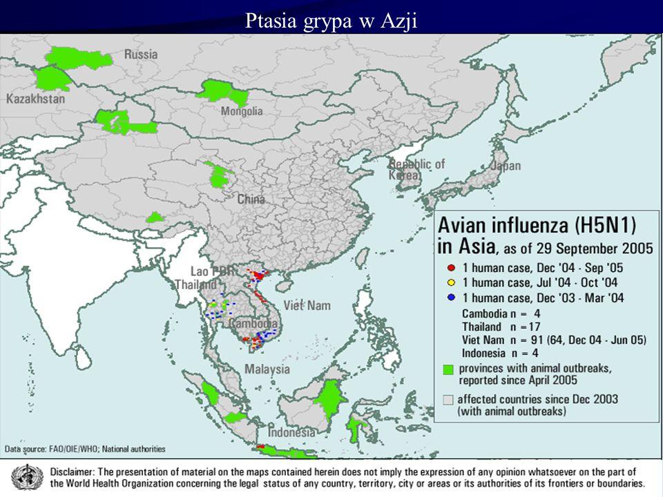 Ptasia grypa w Azji