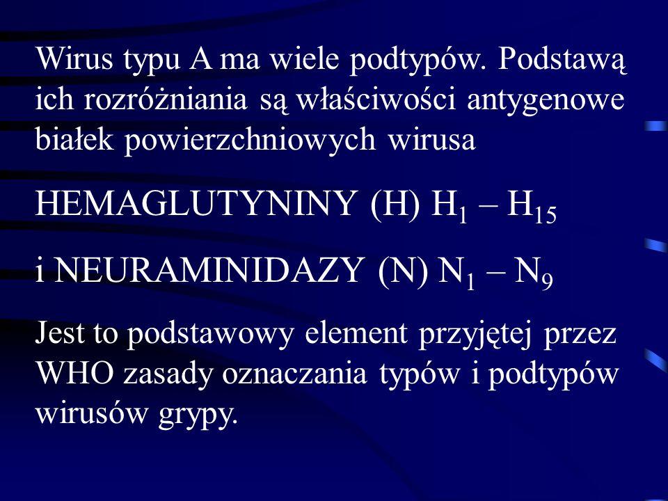 i NEURAMINIDAZY (N) N1 – N9