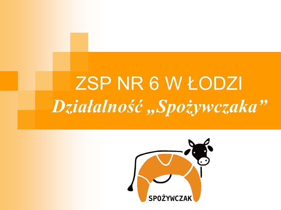 """ZSP NR 6 W ŁODZI Działalność """"Spożywczaka"""