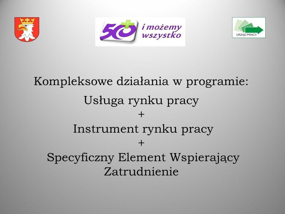 Kompleksowe działania w programie: Usługa rynku pracy + Instrument rynku pracy + Specyficzny Element Wspierający Zatrudnienie