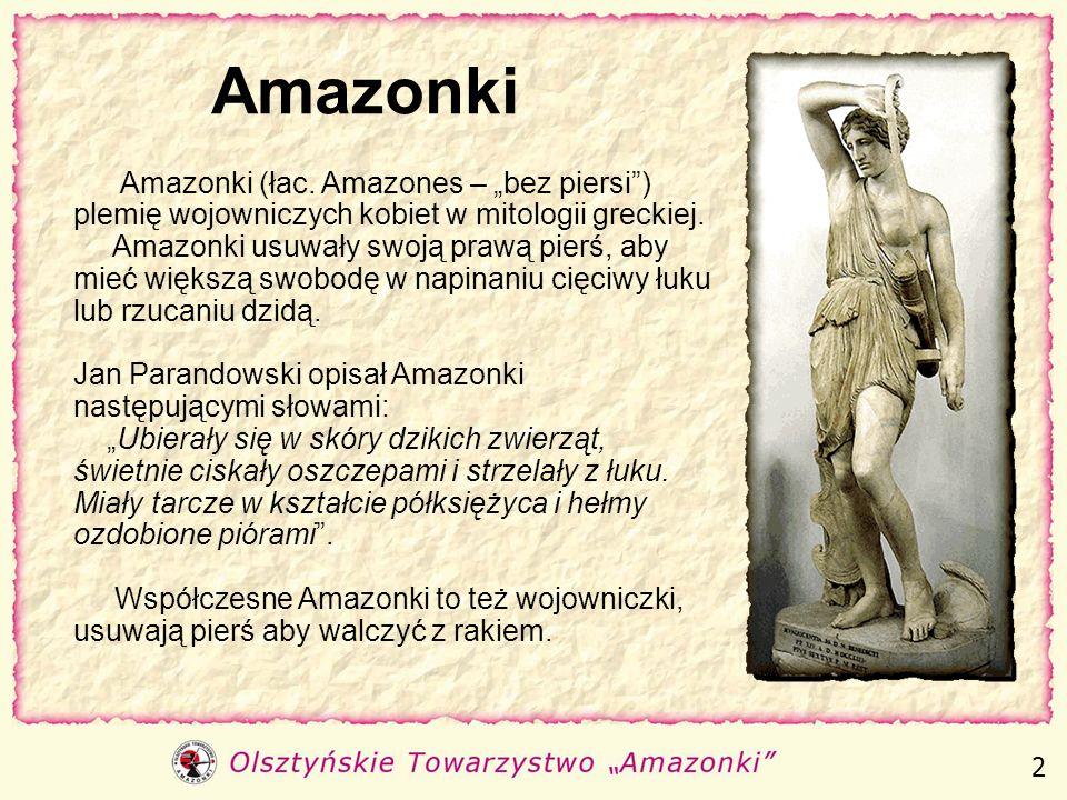 """Amazonki Amazonki (łac. Amazones – """"bez piersi ) plemię wojowniczych kobiet w mitologii greckiej."""