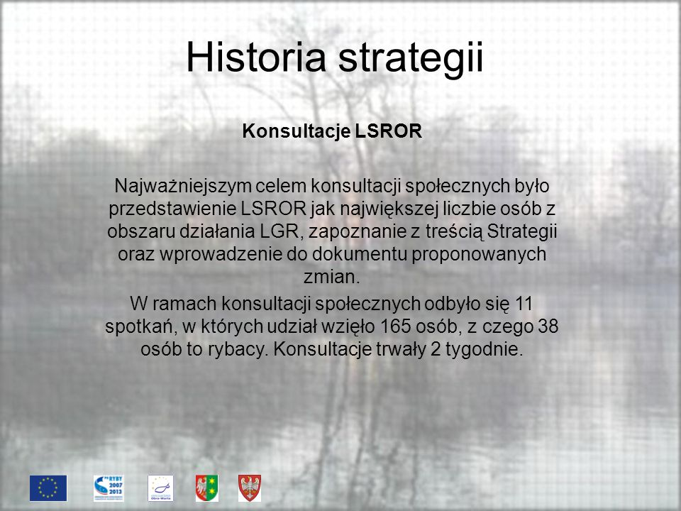 Historia strategii Konsultacje LSROR