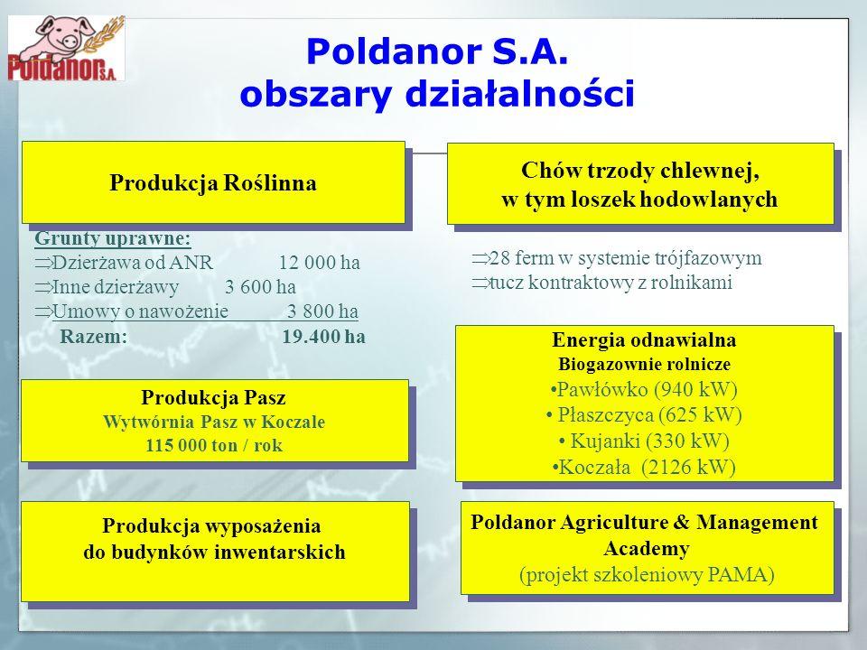 Poldanor S.A. obszary działalności