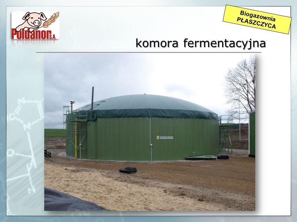 Biogazownia PŁASZCZYCA