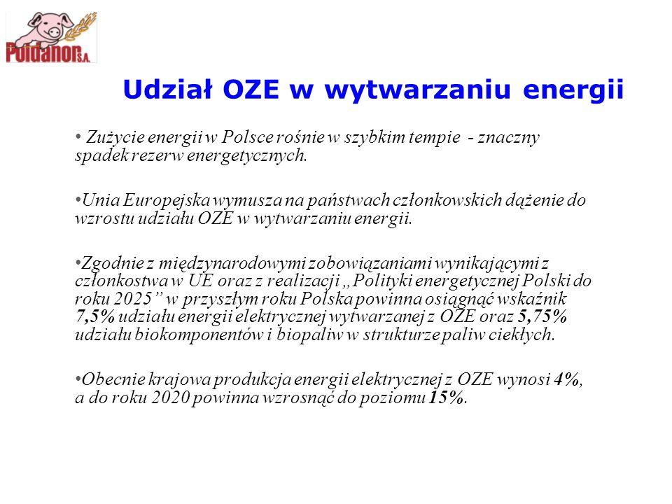 Udział OZE w wytwarzaniu energii