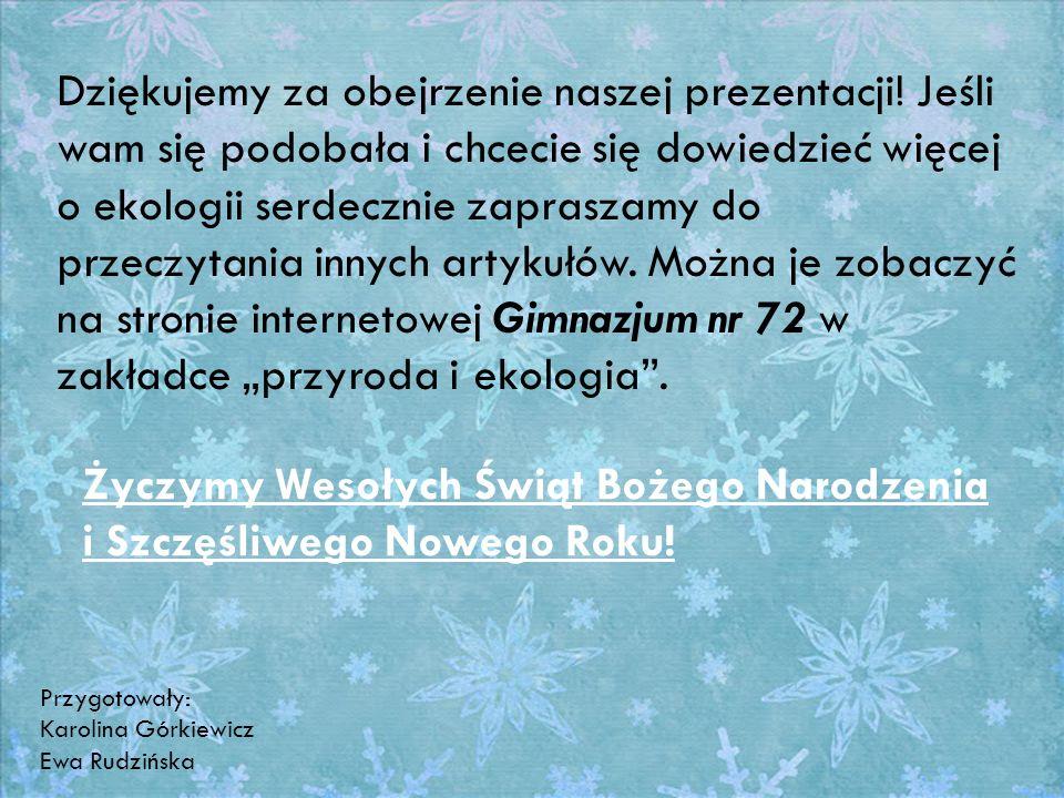 Życzymy Wesołych Świąt Bożego Narodzenia i Szczęśliwego Nowego Roku!