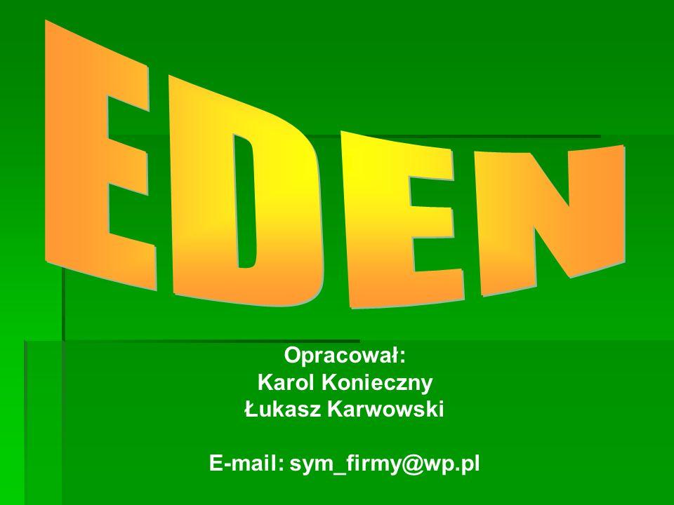 E-mail: sym_firmy@wp.pl