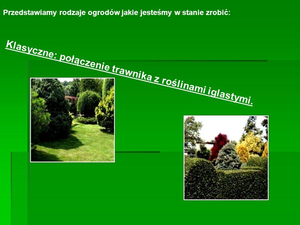 Klasyczne: połączenie trawnika z roślinami iglastymi.