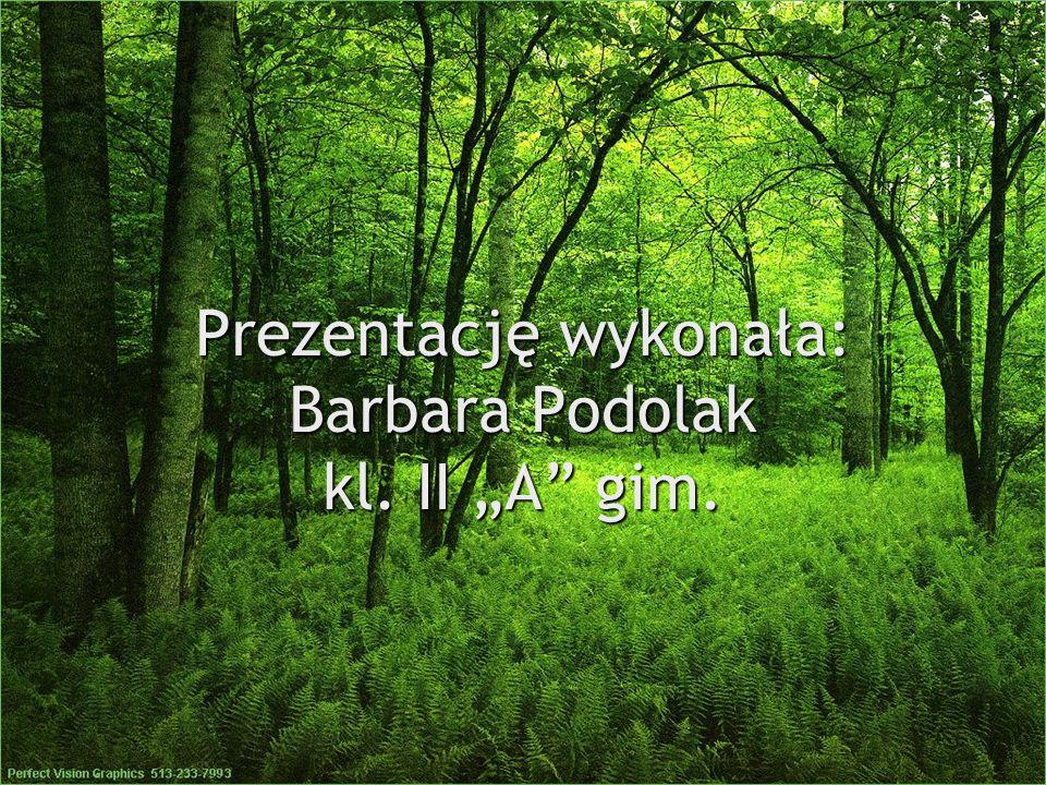 """Prezentację wykonała: Barbara Podolak kl. II """"A gim."""