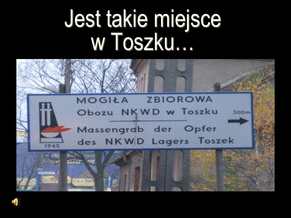 Jest takie miejsce w Toszku…