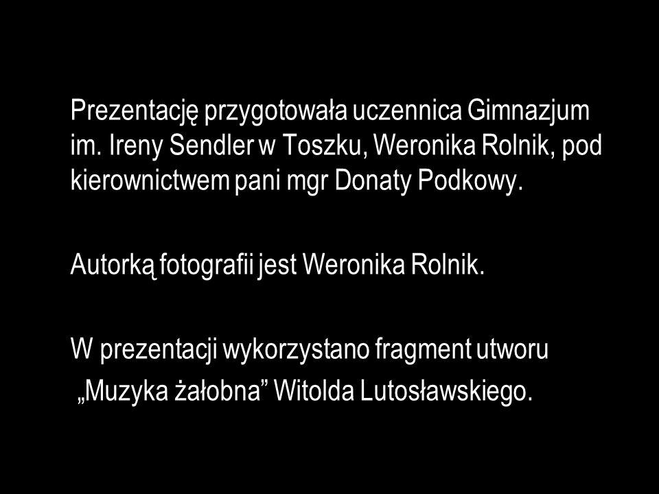 Autorką fotografii jest Weronika Rolnik.