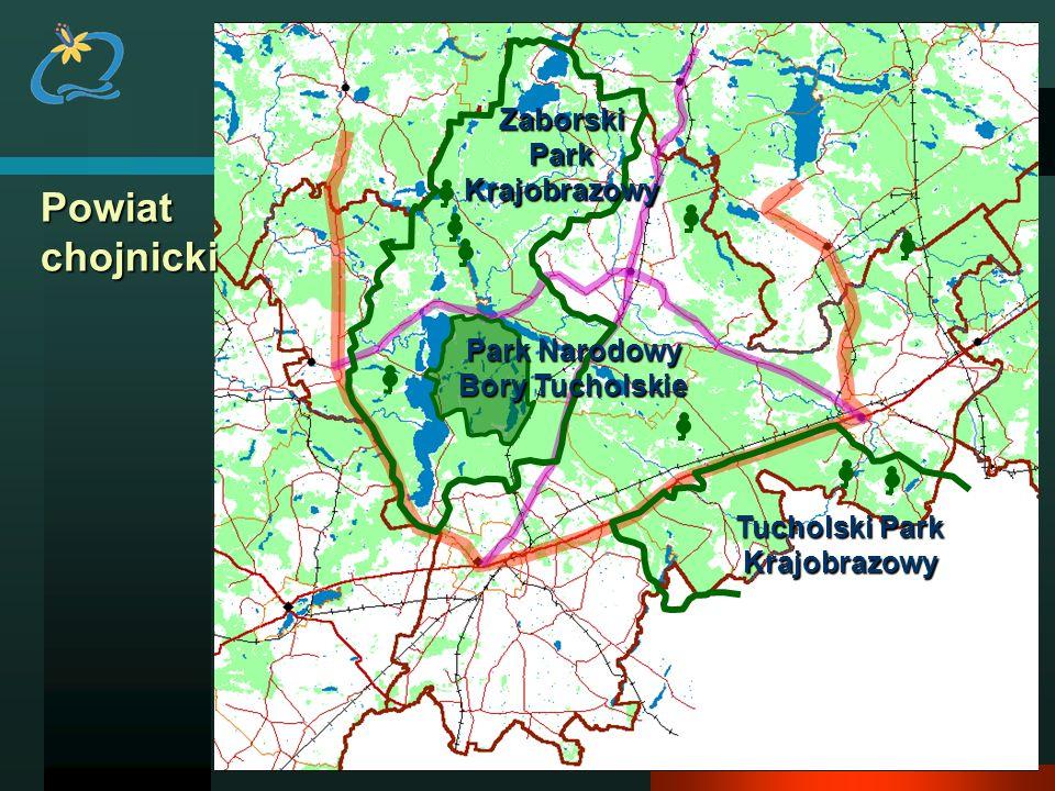 Powiat chojnicki Zaborski Park Krajobrazowy Park Narodowy