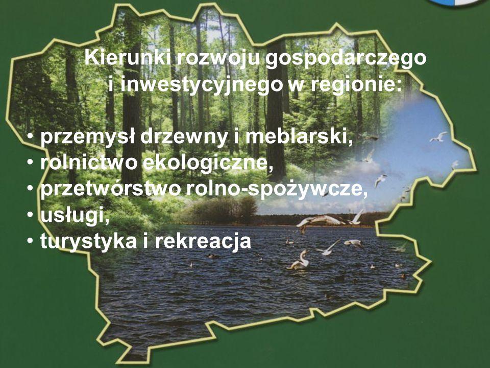 Kierunki rozwoju gospodarczego i inwestycyjnego w regionie: