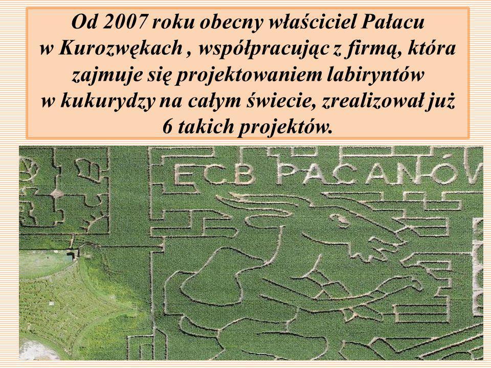 Od 2007 roku obecny właściciel Pałacu w Kurozwękach , współpracując z firmą, która zajmuje się projektowaniem labiryntów w kukurydzy na całym świecie, zrealizował już 6 takich projektów.