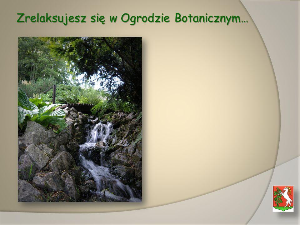 Zrelaksujesz się w Ogrodzie Botanicznym…