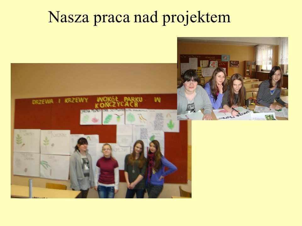 Nasza praca nad projektem