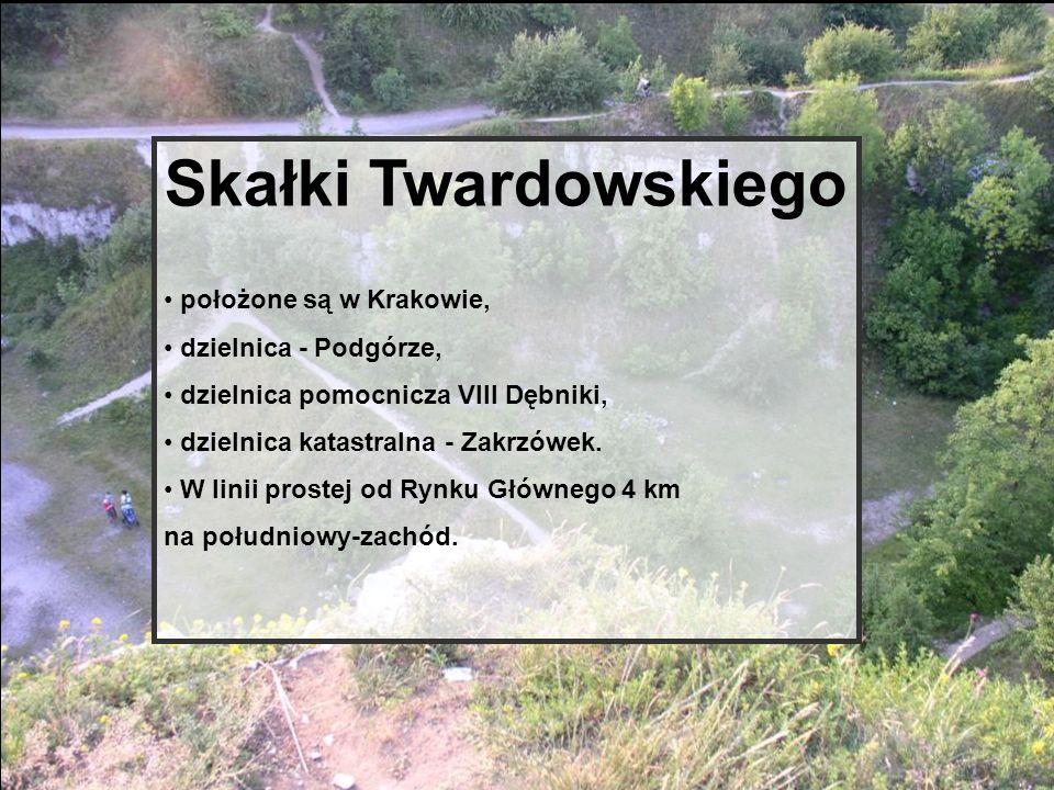 Skałki Twardowskiego położone są w Krakowie, dzielnica - Podgórze,