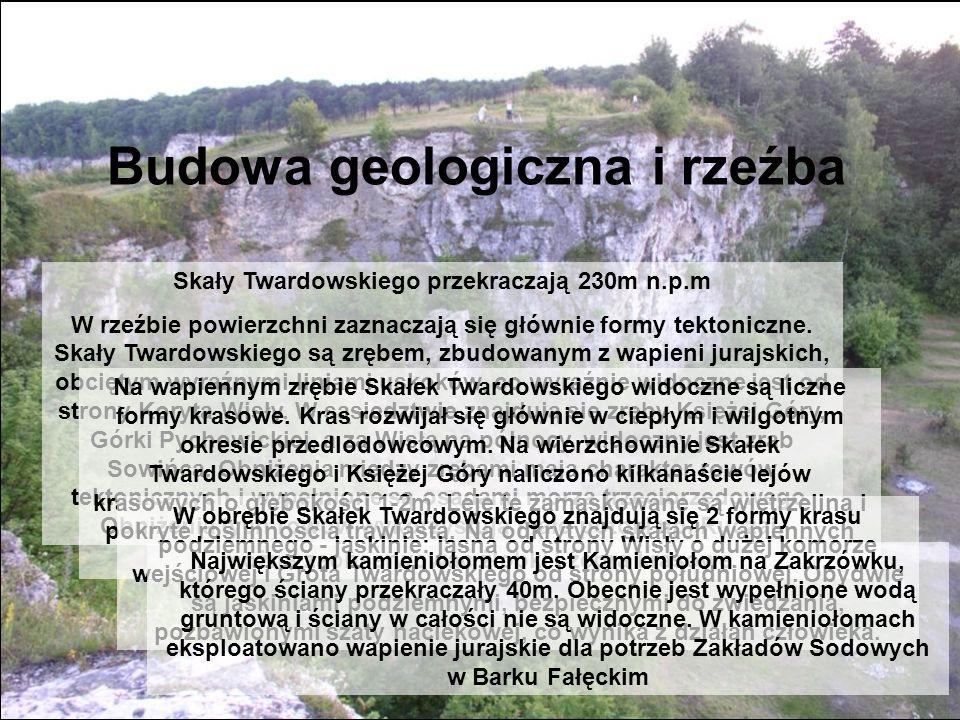 Skały Twardowskiego przekraczają 230m n.p.m
